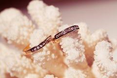 Alianças de casamento em um coral cor-de-rosa Imagens de Stock