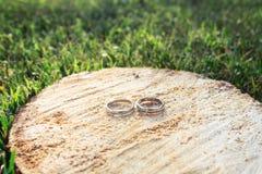 Alianças de casamento em um corte de madeira da serra Imagens de Stock Royalty Free