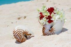 Alianças de casamento em um escudo na praia Fotografia de Stock
