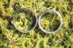 Alianças de casamento em um fundo do musgo Imagens de Stock Royalty Free