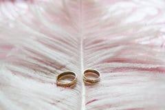 Alianças de casamento em um suporte feito das penas Imagem de Stock
