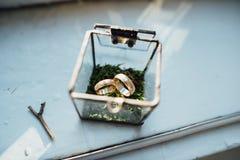 Alianças de casamento em uma caixa de vidro Fotos de Stock Royalty Free