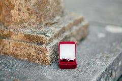 Alianças de casamento em uma caixa vermelha para anéis Fotos de Stock
