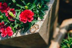 Alianças de casamento em uma cama de flores Imagens de Stock