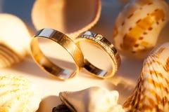 Alianças de casamento na areia com shell Fotografia de Stock