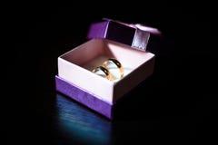 Alianças de casamento na caixa roxa Fotografia de Stock Royalty Free