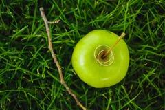 Alianças de casamento na maçã verde Fotos de Stock