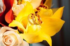 Alianças de casamento na orquídea da flor Fotografia de Stock