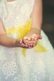 Alianças de casamento nas mãos de uma criança fotos de stock royalty free