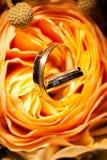 Alianças de casamento nas rosas amarelas Imagem de Stock