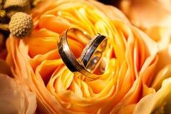 Alianças de casamento nas rosas amarelas Imagens de Stock Royalty Free