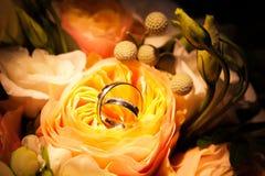 Alianças de casamento nas rosas amarelas Imagens de Stock