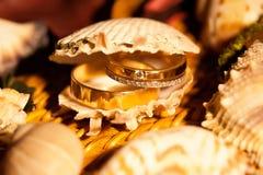 Alianças de casamento no shell amarelo Imagens de Stock Royalty Free