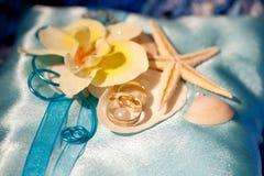 Alianças de casamento nos shell e na estrela do mar Fotos de Stock Royalty Free