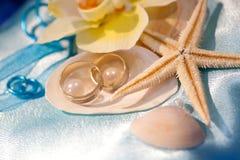 Alianças de casamento nos shell e na estrela do mar Imagem de Stock