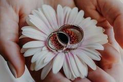 Alianças de casamento de prata contra a flor nas mãos da mulher Feche acima do tiro Símbolo da união jóia Conceito do amor e do r Imagens de Stock Royalty Free