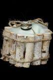Alianças de casamento amarradas em uma caixa Imagens de Stock