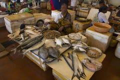 ALIBAG MAHARASHTRAEN, INDIEN, Januari 2018, kvinnafisksäljare säljer med variationer av fisken på den Alibag fiskmarknaden royaltyfri bild