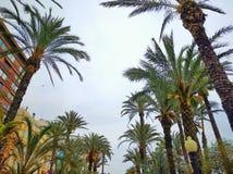 Alicante imagen de archivo