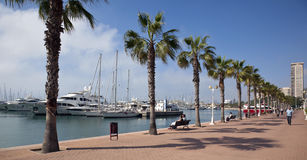 Alicante - Costa Blanca - Spain. The promenade on the waterfront in the city of Alicante in Spain Royalty Free Stock Photo