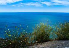 Alicante Spanien Arkivfoton