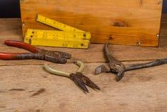 alicates da oxidação Fotografia de Stock Royalty Free