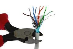 alicates dos Fio-cortadores que cortam a extremidade do cabo de LAN dos dados STP, fundo branco Fotografia de Stock