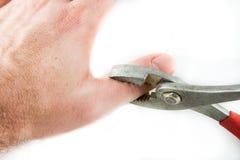 Alicates que griping um polegar em um erro Fotos de Stock