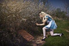 Alice au pays des merveilles photographie stock libre de droits