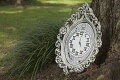 Alice im Märchenlandzitat lizenzfreies stockbild