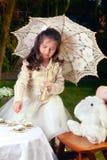 alice jako target647_0_ herbacianą kraina cudów Zdjęcia Royalty Free