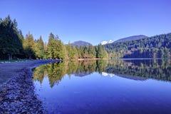 Alice sjö på vintertid Royaltyfri Bild