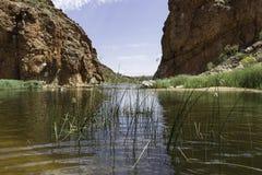 Alice Springs op Noordelijk Grondgebied, Australië Royalty-vrije Stock Foto's