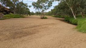 Alice Springs riverbed2 Royaltyfri Fotografi