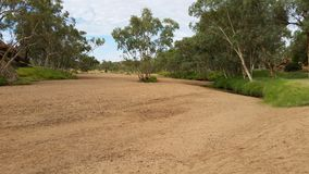 Alice Springs riverbed1 Royaltyfri Foto