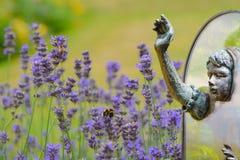 Alice till och med det seende exponeringsglaset - den osedda verkligheten Royaltyfria Bilder
