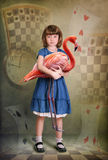 Alice und Flamingo lizenzfreie stockbilder