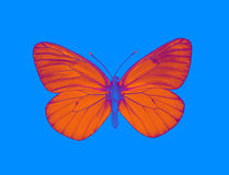 Alien butterfly Royalty Free Stock Images