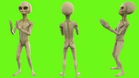 Alien clapping. Loopable animation on green screen. 4k.