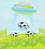 Alien cow abduction. Illustration Stock Photography