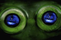 Alien Eyes Royalty Free Stock Images