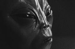 Free Alien Face Royalty Free Stock Photography - 46501837