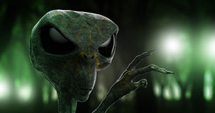 Alien - forrest lights. Forrest lights - sci-fi alien invasion theme illustration Stock Photography
