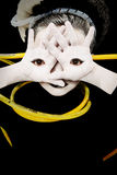 Alien Girl Child with Eyes on Palms of Hands. Alien girl child portrait with eyes on palms of hands and yellow tubes attached royalty free stock photography