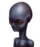 Alien grey extraterrestrial Stock Photos
