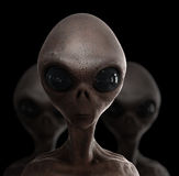 Alien. Head; quality 3d render Royalty Free Stock Photography