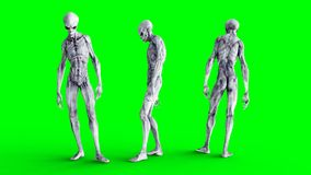 Alien isolate on green screen. UFO concept. Realistic 3d rendering. Stock Images