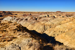 Alien Landscape. The Alien landscape of petrified forest Arizona royalty free stock photos