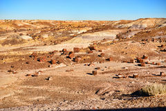 Alien Landscape. Of the petrified forest Arizona royalty free stock photos