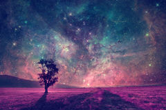 Alien landscape Royalty Free Stock Images